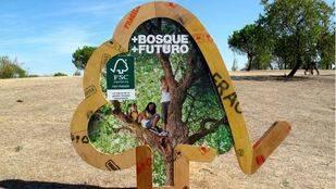 Pozuelo, capital de la gestión forestal y ambiental responsable de bosques y montes