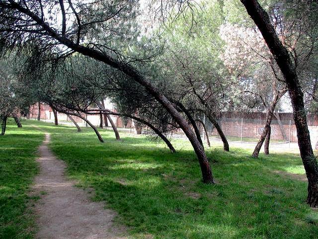 El Ayuntamiento acondiciona el parque Paseo Ermita-Villa Adriana de Moncloa-Aravaca