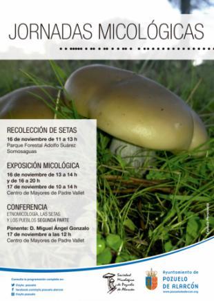 Pozuelo de Alarcón celebra este fin de semana unas jornadas micológicas