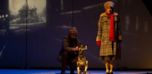 Vuelve la programación familiar a los auditorios de Volturno y a la Escuela Municipal de Música y Danza de Pozuelo de Alarcón