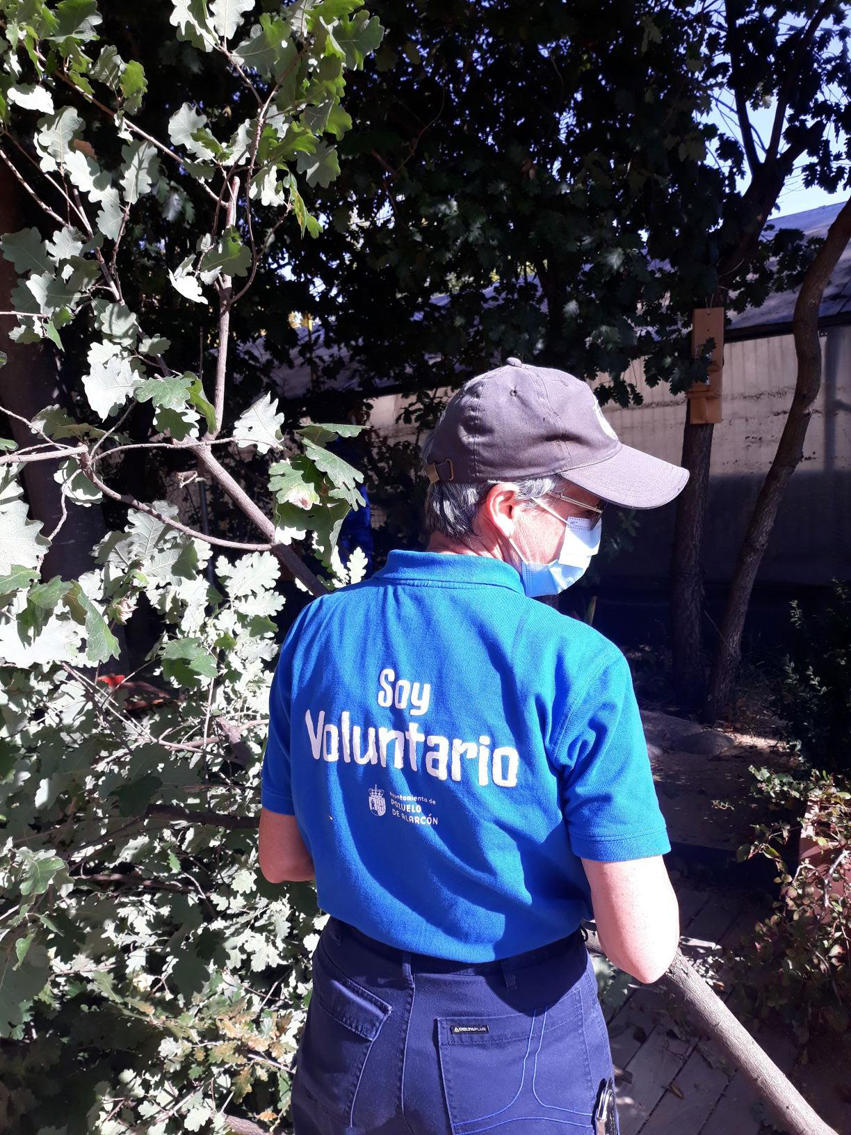 El Ayuntamiento impulsa el voluntariado ambiental como alternativa para la participación segura y saludable