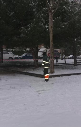 El Ayuntamiento recuerda que los parques siguen cerrados ante el riesgo de caída de ramas
