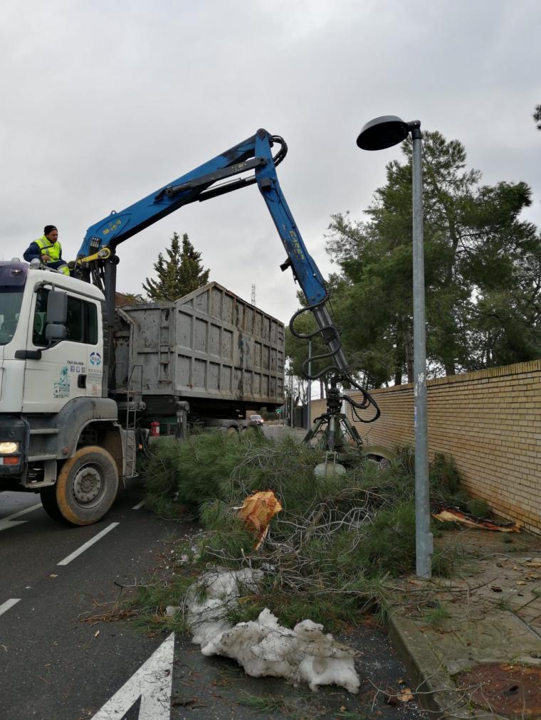 El Ayuntamiento intensifica las labores de recogida de restos de podas de ramas en mal estado