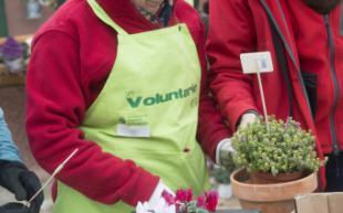 Impulso al voluntariado ambiental en Pozuelo de Alarcón tras la firma de un convenio con la Fundación Adecco