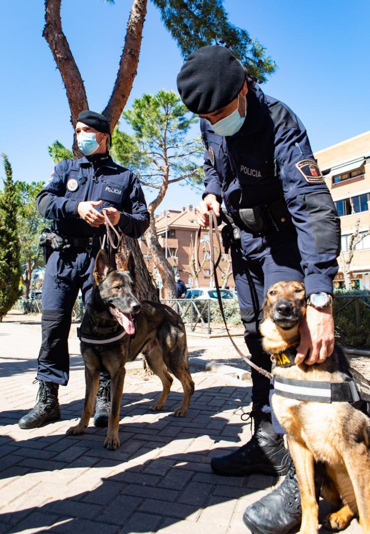 Pérez Quislant se interesa por el desarrollo de los controles policiales de seguridad en la ciudad