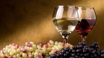 Regresan a Pozuelo las catas de vinos de Madrid