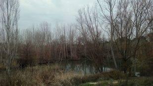 ¿Formará parte Pozuelo del Corredor Ecológico del Suroeste de Madrid?