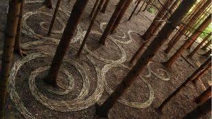 Pozuelo se une al Día Mundial del Parkinson con un taller de Land Art