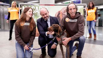 Nueva campaña para apoyar la adopción de animales abandonados