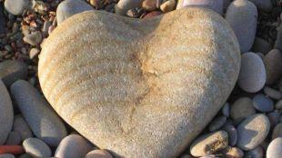 Pozuelo de Alarcón, ¿corazón de piedra?