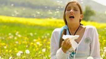 La Comunidad activa la información de los niveles de polen que más afecta a alérgicos