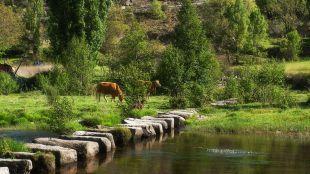 Aprobado el plan de gestión para aumentar la protección de los ríos Alberche y Cofio