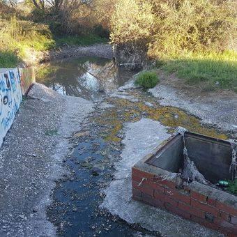 Somos Pozuelo denuncia 'crimen ambiental' en el Arroyo Vallelargo