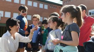 Cerca de 200 escolares de Pozuelo participan en el
