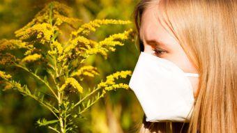 Las enfermedades alérgicas afectan al 30% de la población española