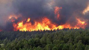La Comunidad de Madrid impulsa la prevención de incendios