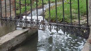 Retiran el 'cachalote' de lodo de la Casa de Campo que proviene de Pozuelo