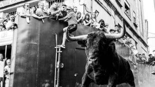 'Vamos a ver los toros' en Pozuelo de Alarcón