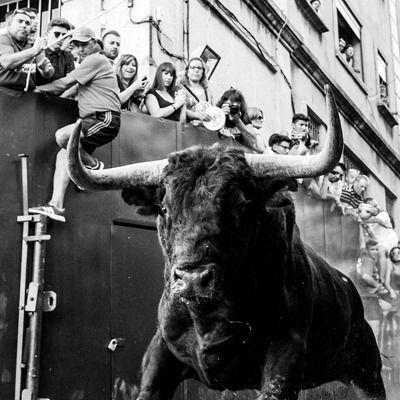 """Susana Pérez Quislant inaugura la exposición fotográfica """"Vamos a ver los toros"""" del pozuelero Manuel G. Cosía"""