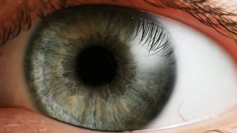 Padres de niños con cáncer y otras enfermedades en ojos se quedan sin médicos especialistas