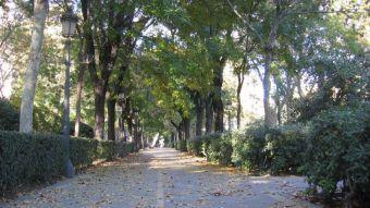 Madrid presenta la candidatura del Retiro y el Paseo del Prado como Patrimonio Mundial