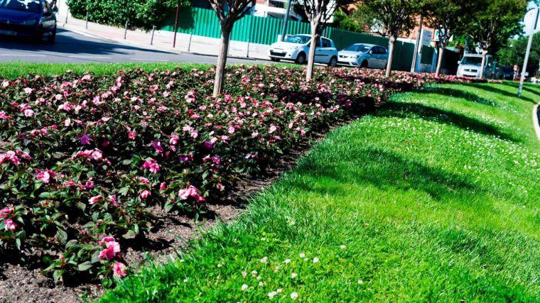 Cerca de 25.000 flores pondrán color a las calles de Pozuelo este verano