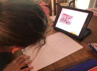 La Comunidad de Madrid destaca el esfuerzo de docentes y familias para dar continuidad a las actividades educativas a distancia