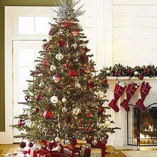 Consejos para el consumo en Navidad