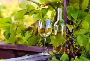 El vino blanco: 13 mitos y propiedades