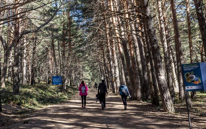 La Comunidad de Madrid ofrece más de 70 rutas turísticas para disfrutar del verano en la región