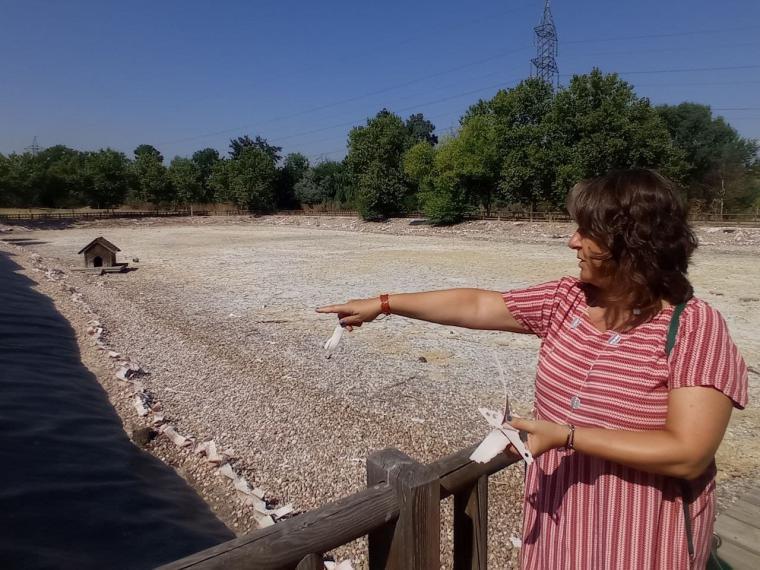 Patricia Cabal: 'La alcaldesa Quislant continúa destrozando el Parque Forestal Adolfo Suárez'.