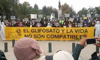 """Perpinyà: """"Pedimos al Gobierno que deje de utilizar glifosato en Pozuelo"""