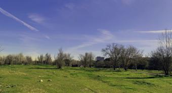 La Comunidad comenzará en los próximos meses la construcción del IES Anna Frank en Aravaca