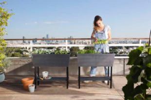 Cultiva tu propio huerto en casa, limpia y cómodamente