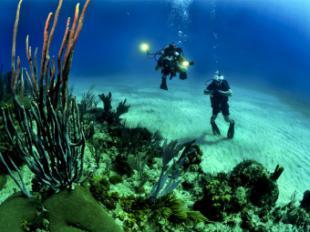 Aumentan un 21% los certificados médicos para hacer submarinismo