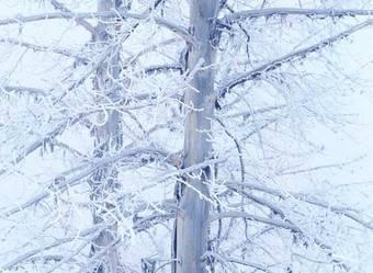 Comienza el Plan de Inclemencias Invernales 2015-2016