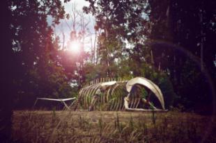 """La Comunidad de Madrid presenta """"Azul"""", una instalación escultórica de 20 metros del esqueleto de una ballena interactiva"""