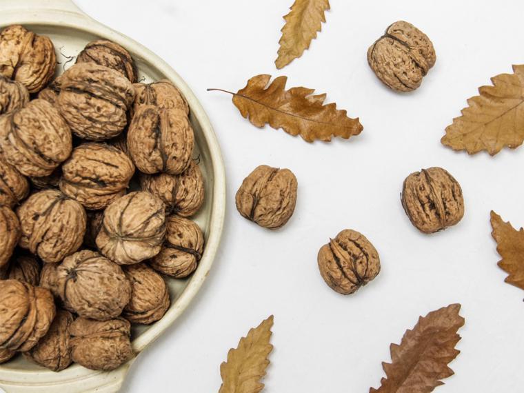 Guía definitiva de los frutos secos