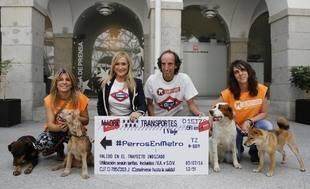 Los perros pueden viajar en Metro