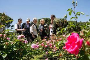 """La alcaldesa entrega los premios de la 60 edición de Rosas Nuevas """"Villa de Madrid"""""""