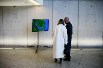 La Comunidad presenta la exposición 'El teatro de la naturaleza' con motivo de la Cumbre del Clima