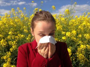 La Comunidad activa la información diaria de los niveles de polen que más afecta a los alérgicos