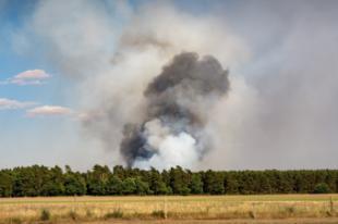 Qué hacer y qué no si nos sorprende un incendio forestal en la carretera