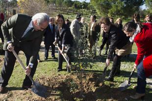 Nace en Pozuelo el primer Arboreto de Clones de España