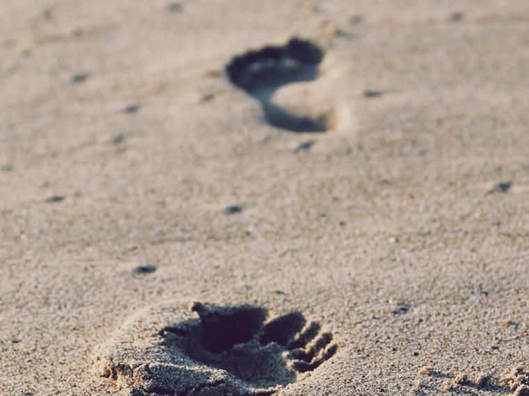 Este año más que nunca... ¡Cuidado en playas y piscinas!