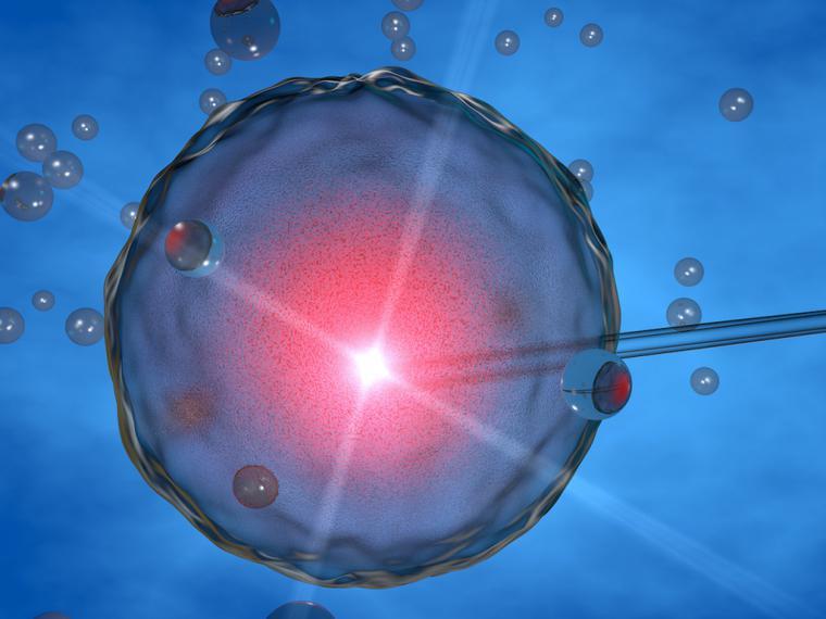 Especialistas en Reproducción Asistida debaten el futuro de la genética humana para reducir riesgos de enfermedades hereditarias graves