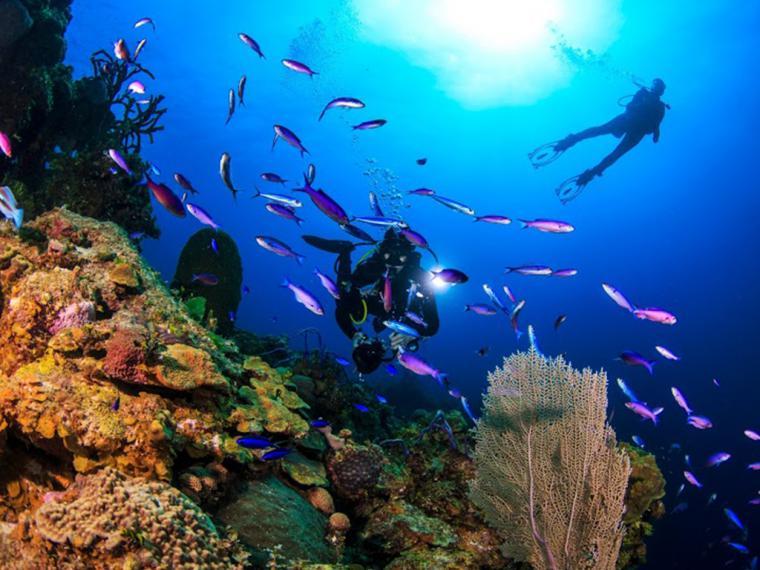 Las Bahamas dicen NO al plástico