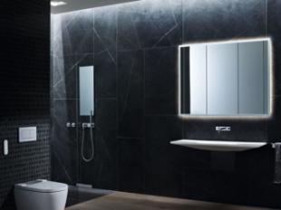 El 64% de los hogares que deciden realizar una reforma completa del baño cambia el inodoro