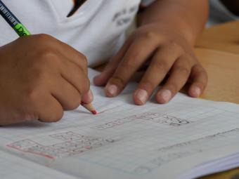 172 centros de Educación Primaria de la Comunidad participan en las pruebas TIMSS 2019