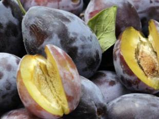 ¿Sabías que la ciruela de Kakadu es el antioxidante más potente y la mayor fuente de Vitamina C del mundo?
